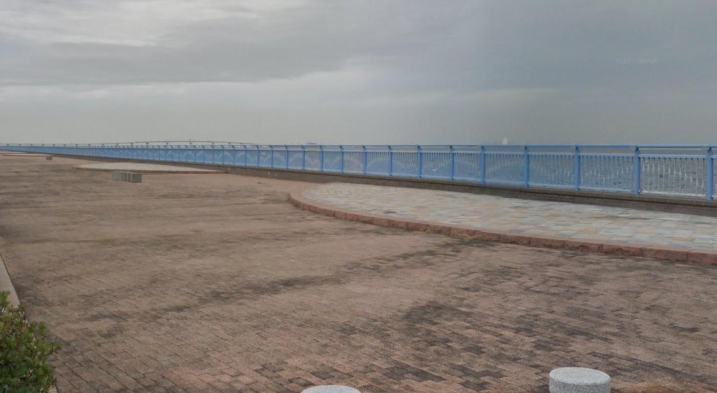 袖ヶ浦 海浜 公園 釣り